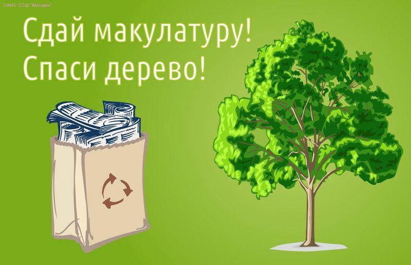 Макулатура омск омский форум сколько стоит кг макулатуры в ташкенте
